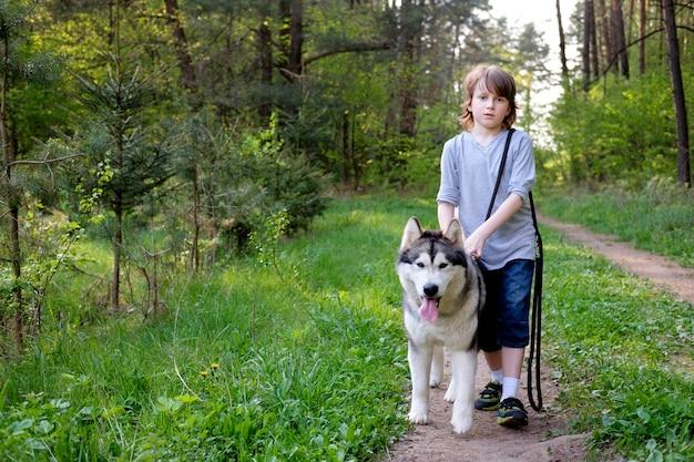 Ragazzo con il suo cane malamute su una passeggiata nella foresta