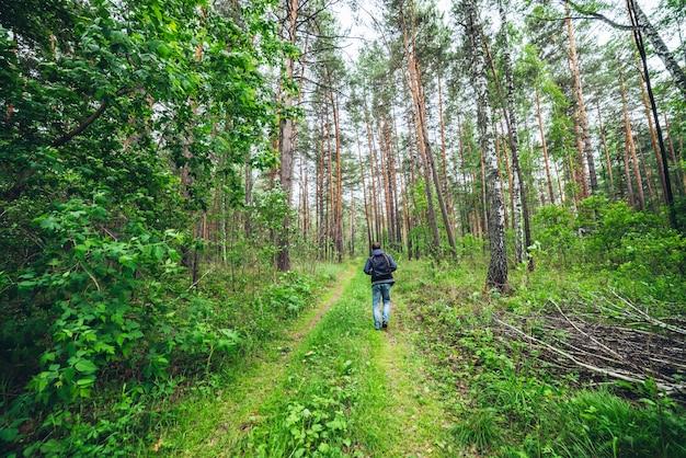 Ragazzo con lo zaino che cammina nella foresta soleggiata tra boschetti lussureggianti