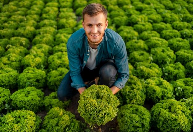 Ragazzo contento dell'agricoltore che tiene una testa di lattuga su una vista superiore del giacimento della lattuga