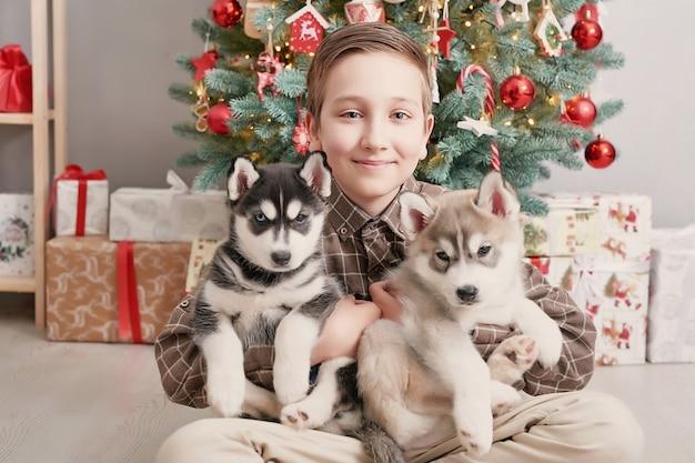 Ragazzo del bambino con i cuccioli del husky dei cani e l'albero di natale.
