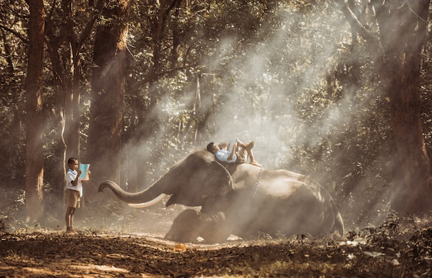 Ragazzo di scuola che studia nella giungla con il suo amico elefante