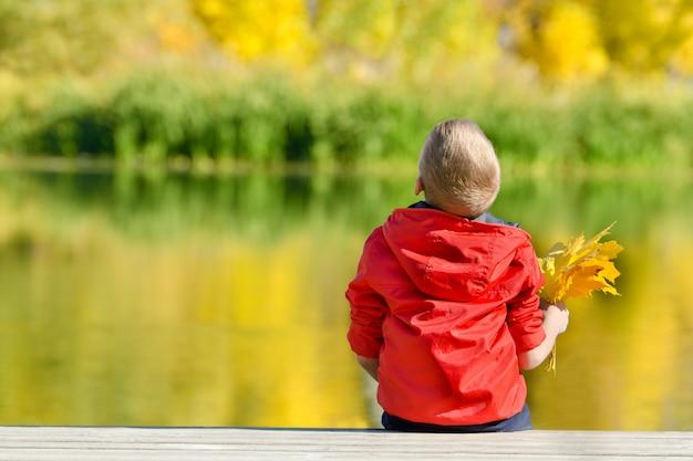 Ragazzo in giacca rossa con foglie nelle mani seduto sul molo. autunno soleggiato. vista da dietro