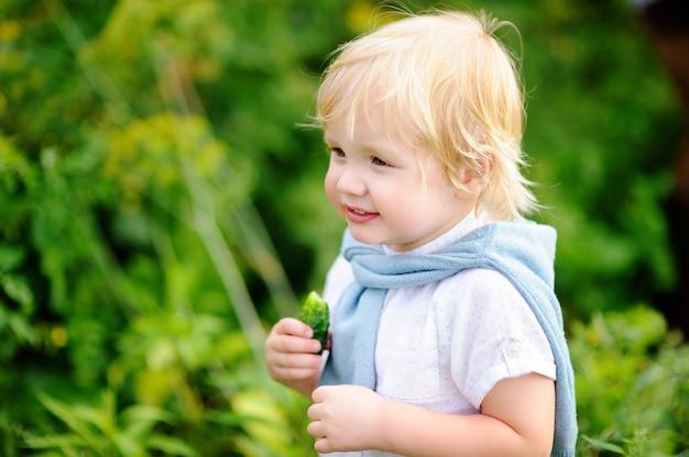 Ragazzo sveglio del bambino che mangia cetriolo organico fresco in giardino domestico