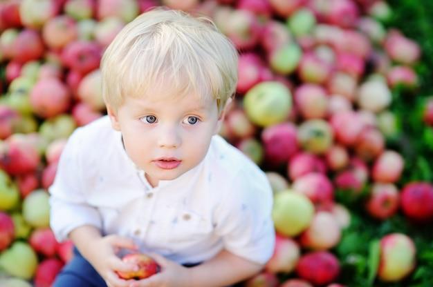 Ragazzo sveglio del bambino che si siede sul mucchio delle mele e che mangia mela matura in giardino domestico