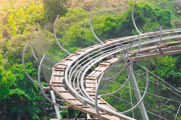 Rail roller coaster avventuroso, croce nella foresta laterale