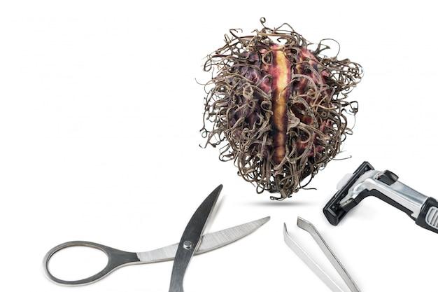 Rambutan secco e attrezzatura per la depilazione