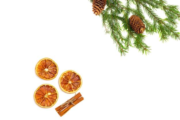 Rami di abete, pigne e frutta arancione secca, stecca di cannella isolato su uno sfondo bianco