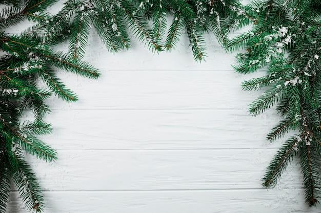 Rami di conifere con neve
