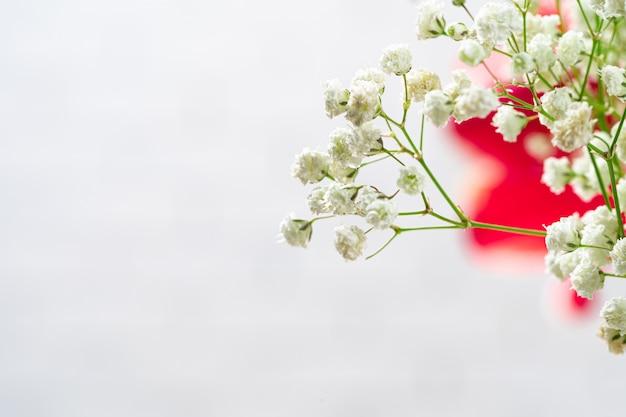Rami di fiori del respiro del bambino nella fine della stanza bianca su