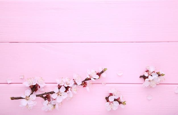Rami di fioritura della primavera su fondo di legno rosa con copyspace.