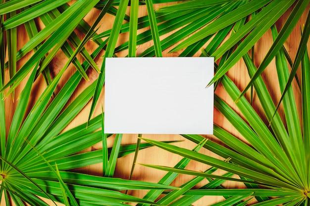 Rami di palma verde sul tavolo di legno. carta ecologica con foglie di palma e carta bianca al centro per il testo.