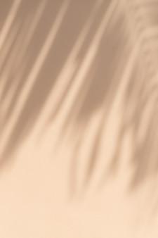 Rami di palme tropicali esotici su sfondo beige pastello pallido