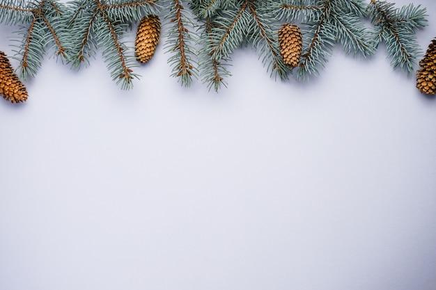 Rami di pino blu con coni su grigio con vista dall'alto del copyspace.