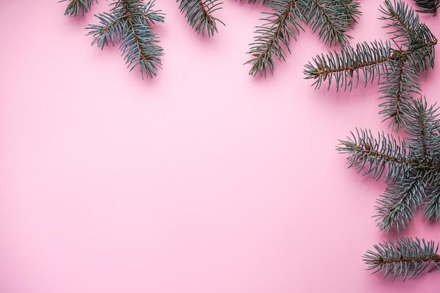 Rami di un albero di natale, in rosa con copyspace, vista dall'alto