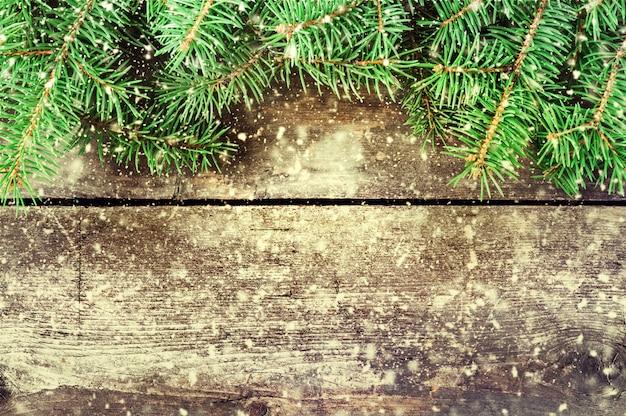 Rami di un albero di natale su vecchie schede.