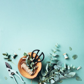 Rami e foglie di eucalyptus, potatore del giardino, forbici, piatto di legno sopra fondo verde