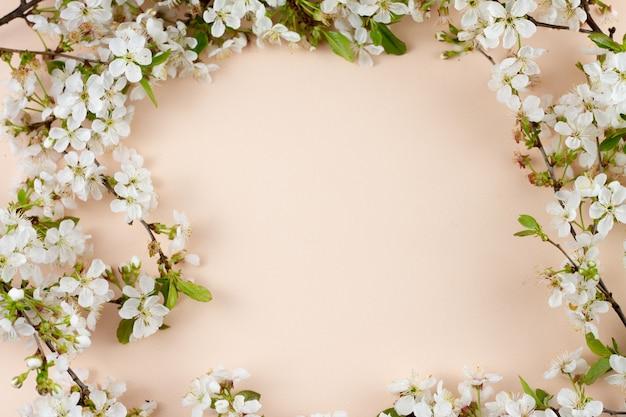 Rami fioriti su uno sfondo pastello con un posto per un'iscrizione.