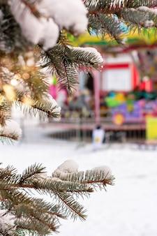 Ramo di abete sotto la neve