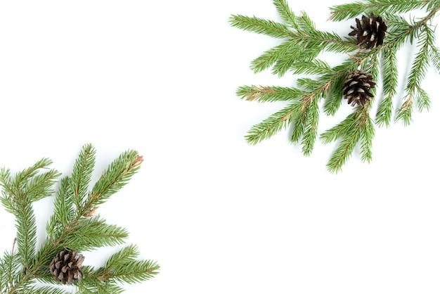 Ramo di albero di abete e coni isolati su superficie bianca.