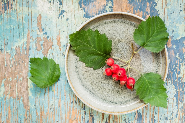 Ramo di biancospino con bacche e foglie su un piatto su uno sfondo rustico.
