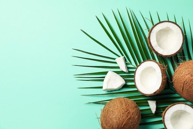 Ramo di palma e cocco sulla menta. frutta tropicale