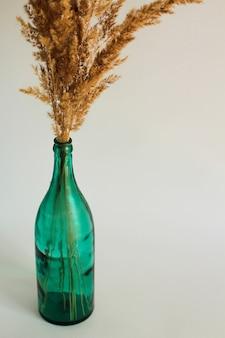 Ramo secco nel vaso verde trasparente della bottiglia su un fondo bianco
