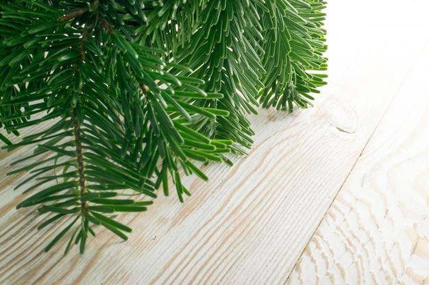 Ramoscello di abete verde naturale sfondo