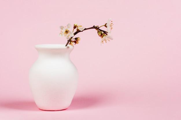 Ramoscello di fioritura in brocca bianca sulla fine rosa del fondo su con lo spazio della copia