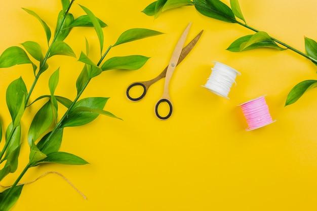 Ramoscello di foglie verdi; forbici e rocchetti di filo su sfondo giallo