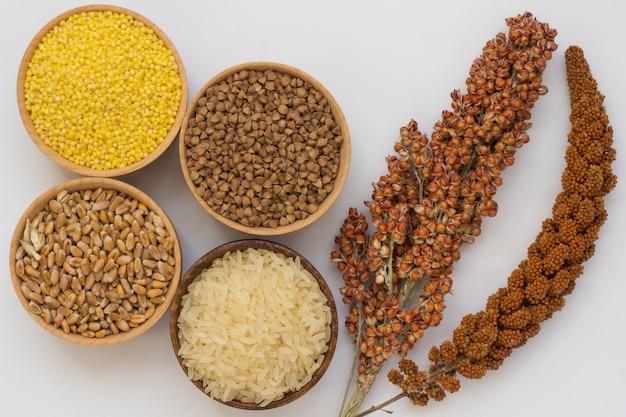 Ramoscello rosso miglio e sorgo, grano saraceno, miglio, riso, grano in scatole su una superficie bianca
