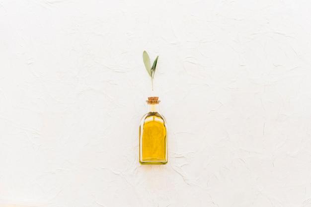 Ramoscello verde oliva sopra la bottiglia di olio chiusa sopra lo sfondo bianco