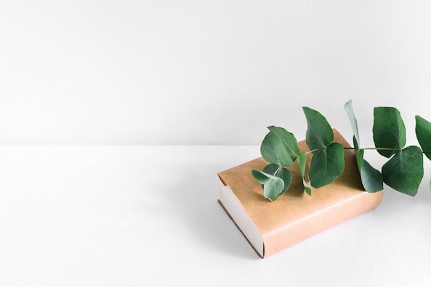 Ramoscello verde sul libro di copertura marrone chiuso su sfondo bianco