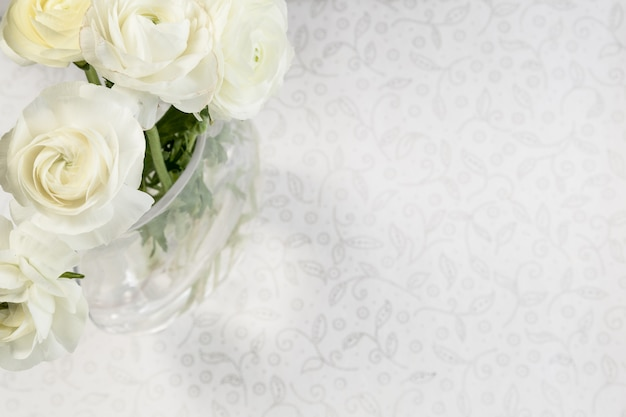 Ranunculus bianco