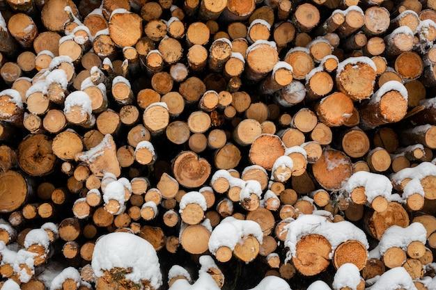 Registrazione nella foresta di neve, stock di legname