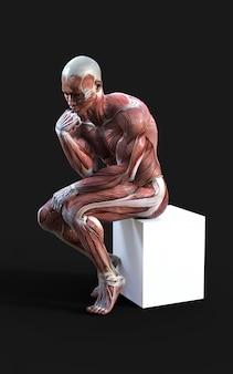 Rendering 3d di figure maschili in posa con i muscoli