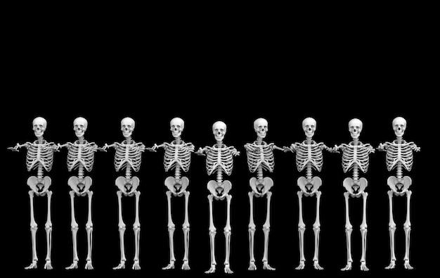 Rendering 3d. fila del gruppo di ossa di scheletro del cranio umano fantasma sul nero. horror halloween.
