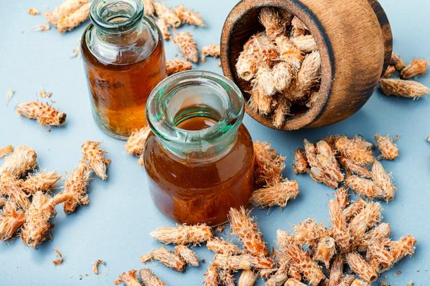Reni di pino nella medicina popolare