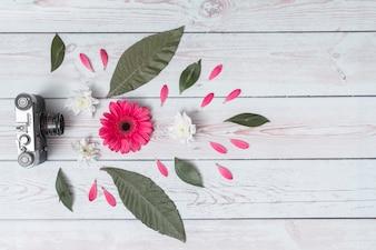 Retro macchina fotografica vicino set di fiori freschi e foglie