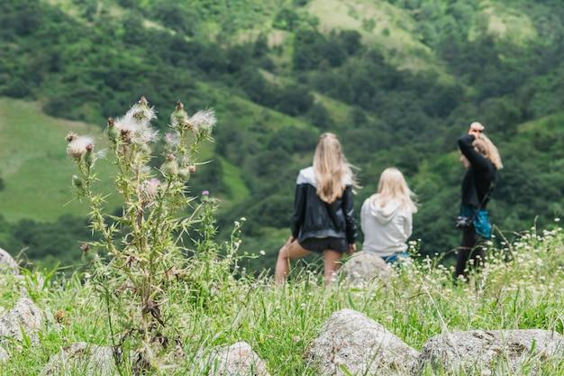 Retrovisione degli amici femminili che si siedono insieme fronte montagna verde