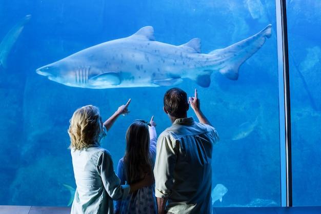 Retrovisione della famiglia che indica allo squalo in un carro armato