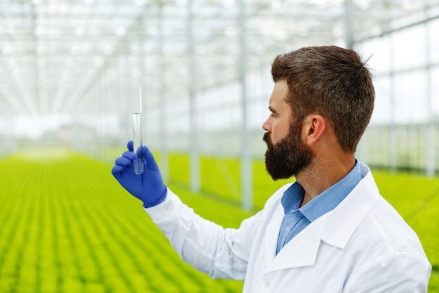 Ricercatore uomo tiene un tubo di vetro con campione in piedi prima di piante in serra