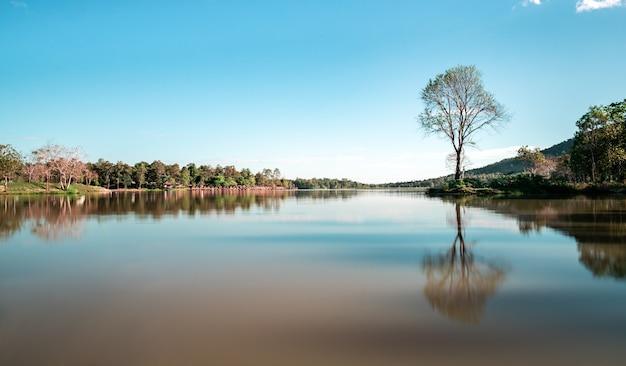 Riflessione pacifica dell'albero sul lago di huay tung tao a chiang mai, località turistica di vacanza in campeggio vicino al bellissimo sfondo di natura acqua calma in giornata di sole