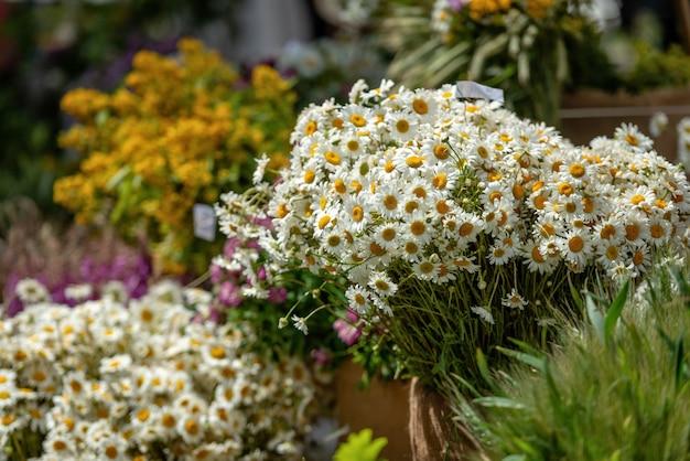 Riga, lettonia. mazzi con diversi fiori estivi sul mercato delle vacanze di ligo.