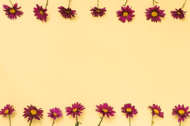 Righe di fiori rosa sul tavolo