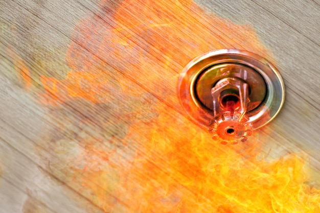 Rilevatore di fumo a doppia esposizione e sprinkler pendent su soffitto, emergenza antincendio