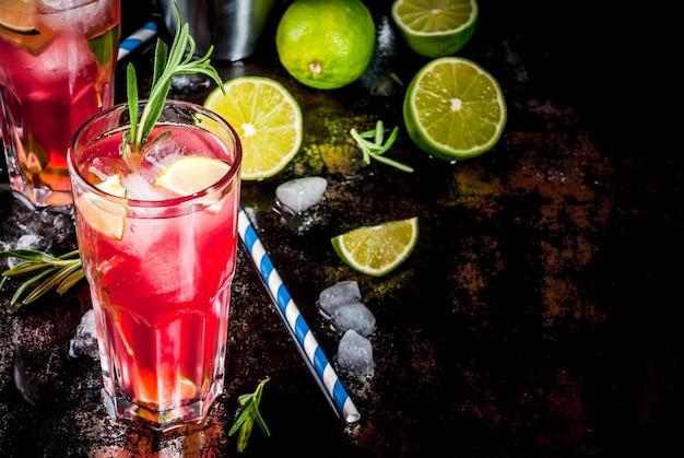 Rinfresco alcolico rosso mirtillo e lime cocktail con rosmarino e ghiaccio, due bicchieri