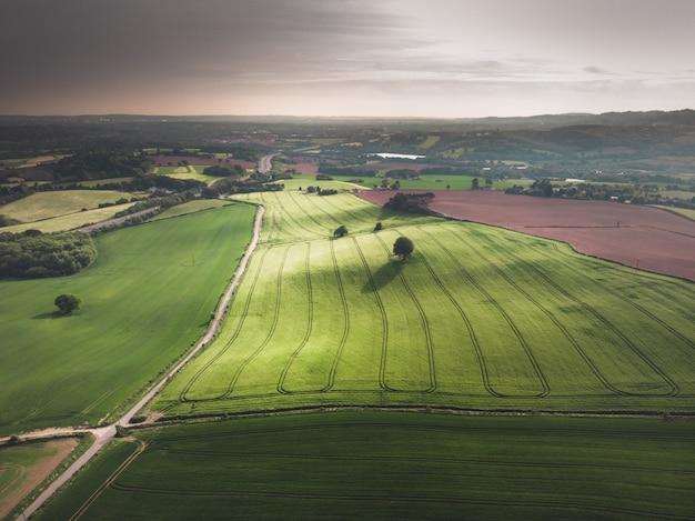 Ripresa aerea di un bellissimo campo verde con alberi sotto un cielo grigio