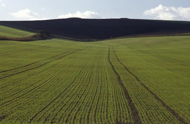 Ripresa aerea di un campo erboso con una montagna in lontananza nel wiltshire, regno unito