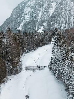 Ripresa aerea di una strada circondata da alberi di pino e una parte di una grande montagna in inverno