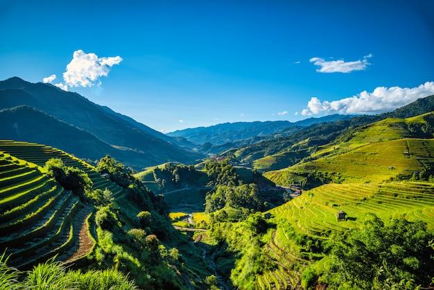 Risaie su a terrazze con il padiglione di legno sul fondo del cielo blu in mu cang chai, yenbai, vietnam.